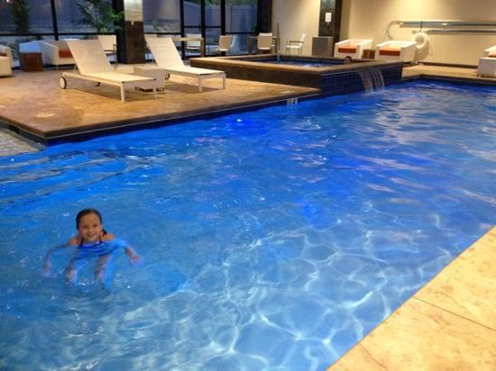 Holiday Inn & Suites Charleston West: very nice hotel, kids will love the pool