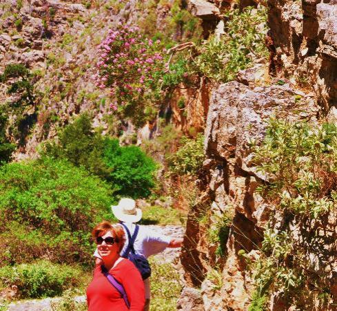 Imbros Gorge : flowers