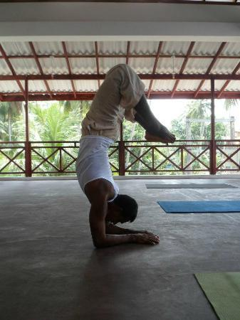 ... vote yoga with asiri reviewed june 11 2012 i thoroughly enjoyed yoga