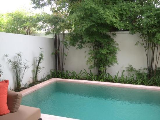 SALA Samui Resort And Spa: our private pool