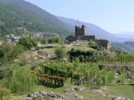 Montagna in Valtellina, Italy: Provided by: FAI - Fondo Ambiente Italiano