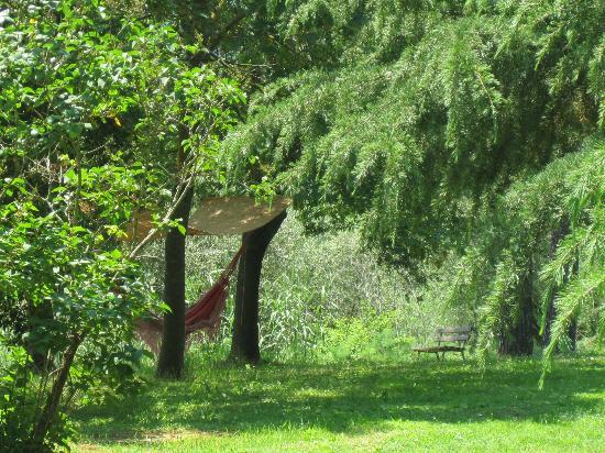 Agriturismo Bethsaid: Gartenansicht