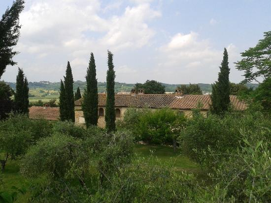 Tenuta Quarrata: Blick vom Pool