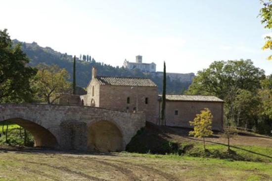 Bosco di San Francesco: Provided by: FAI-Fondo Ambiente Italiano