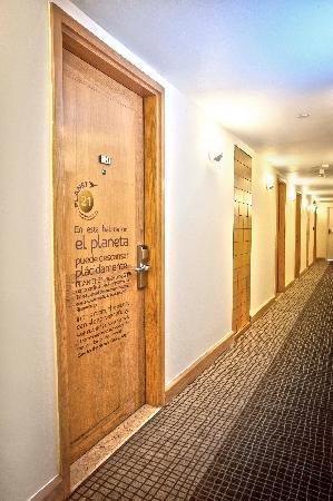 Novotel Mexico Santa Fe: Corridors