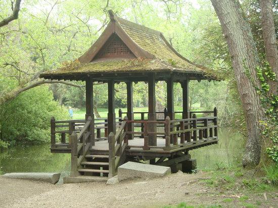 Castel, UK: The japonese garden
