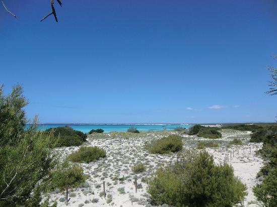 la spiaggia libera - free natural beach es trenc