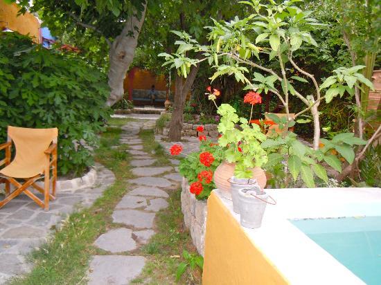 Marco Polo Mansion: garden