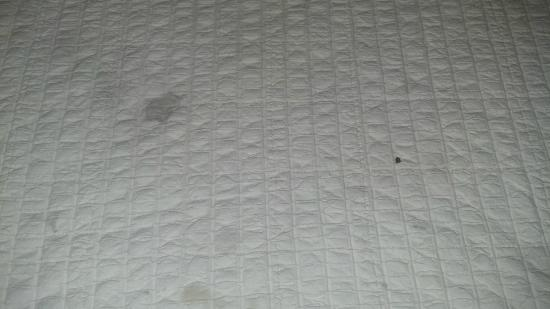 A Victory Inn & Suites: Dirty comforters with blood