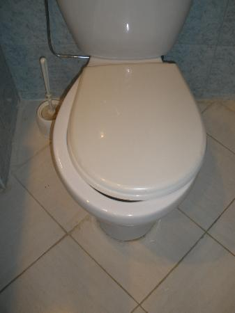 Too Small Toilet Seat Picture Of Kenzi Azghor