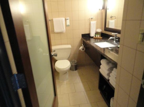 Red Lion Hotel Anaheim Resort: The Bathroom