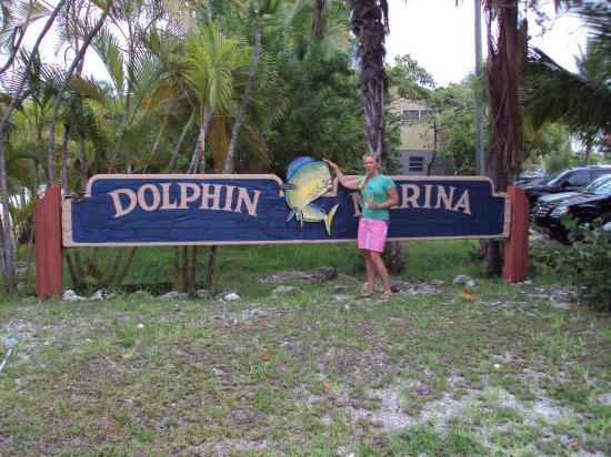 Dolphin Marina & Cottages: front sign