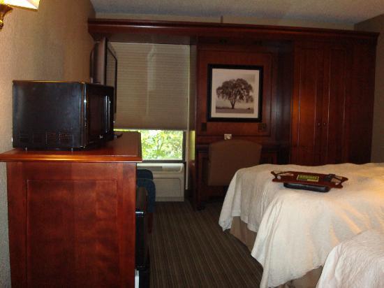 Hampton Inn Long Island/Islandia: Another view of room 332