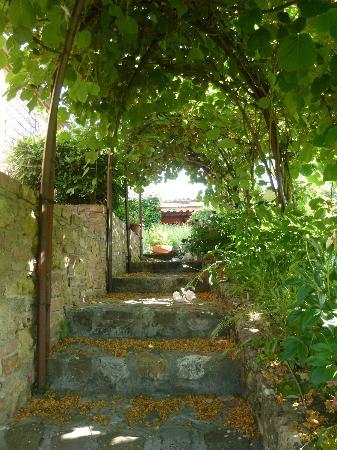 Relais San Bruno: garden