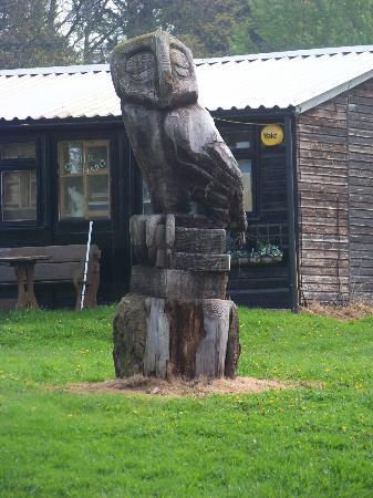 Torre Cider Farm: Bird In Wood