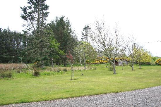 Wemyss House: Blick in den Gartenbereich