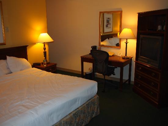 LaGuardia Airport Hotel: Bedroom