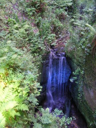 Shanklin Chine: Waterfall at Entrance