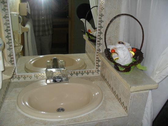 Imagen De Baño Limpio:Foto de Villa Las Margaritas Plaza Cristal, Xalapa: Baños limpios