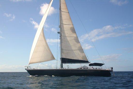 Bequia: Octopus Yacht