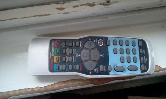 Taste of India on the Green: Disgusting remote control for TV