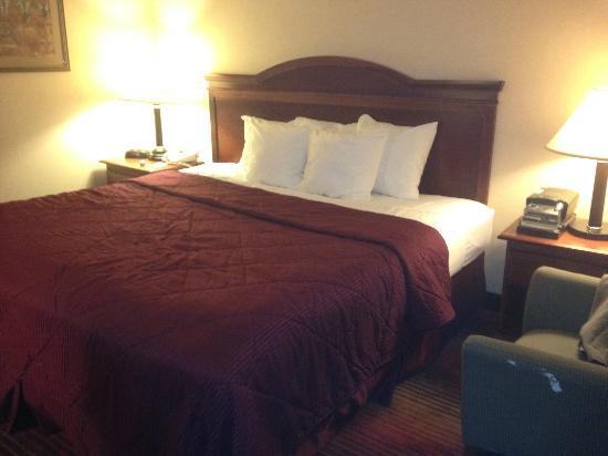 Comfort Inn Towson : King bed, no smoking room