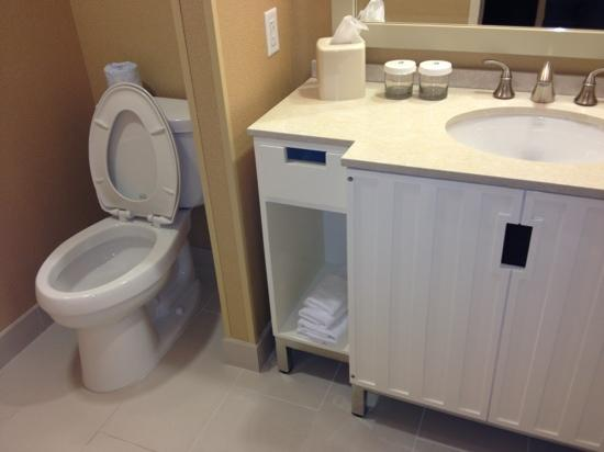Embassy Suites by Hilton Houston Downtown: spacious bathroom