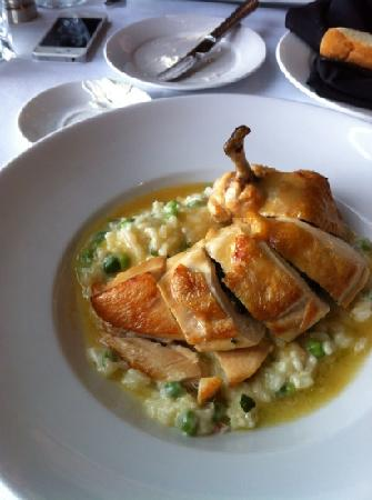 Tendrils Restaurant: chicken with risotto
