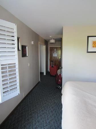 Hotel Indigo Napa Valley: hallway