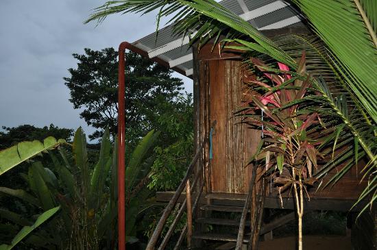La Loma Jungle Lodge and Chocolate Farm : Our Cabin