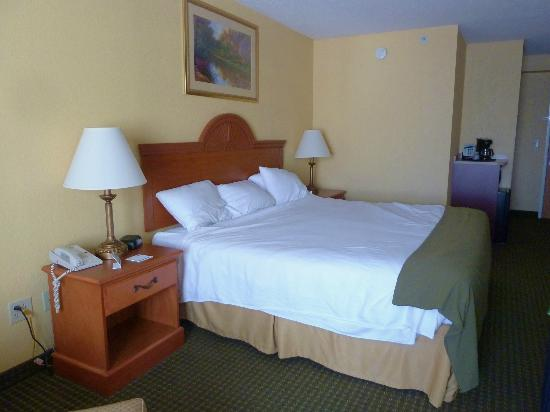 Holiday Inn Express Charles Town: Large King Bed--room had microwave and refrigerator