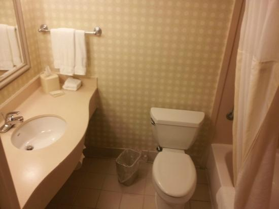 Hilton Garden Inn Allentown West: Bathroom
