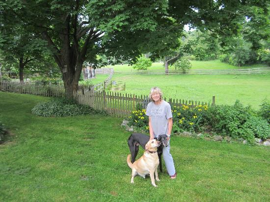 MeadowLark Farm Bed and Breakfast: Owner Dorothy and her dogs in the back garden