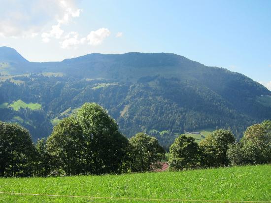 Maierl-Alm und Chalets: Aussicht