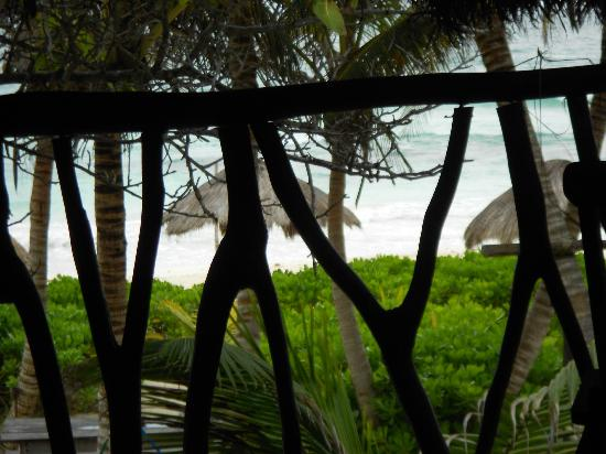 Playa Selva: View from the deck