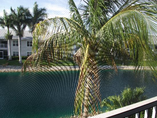 GreenLinks Golf Villas at Lely Resort: view from the balcony