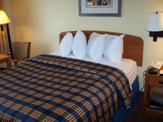 Best Western Plaza Inn: Comfortable Beds