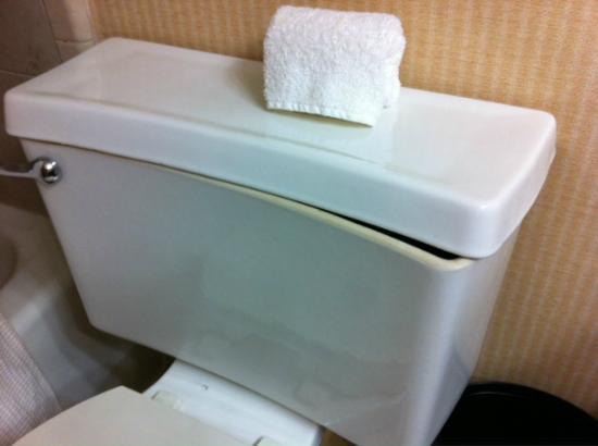 Embassy Suites by Hilton Austin - Central: Toilet lid