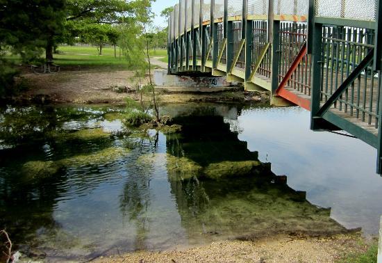 Amelia Earhart Dog Park