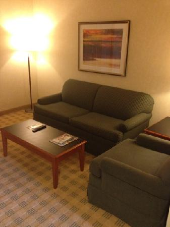 Doubletree Suites by Hilton Hotel & Conference Center Chicago / Downers Grove: living room