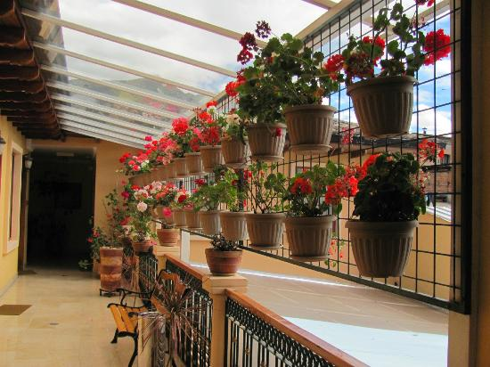 Hotel Boutique Plaza Sucre: Plant Garden on 3rd Floor Balcony