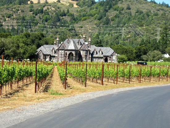 Ledson Hotel: The Ledson Winery/Vineyard