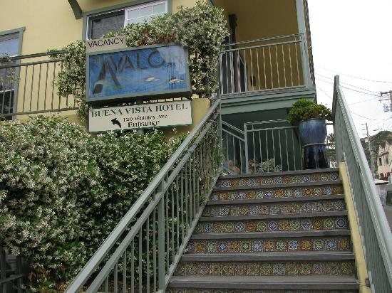 The Avalon Hotel : Jasmine