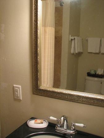 Riverview Hotel: Bath in Riverview room #19, the Okefenokee, recently remodeled.