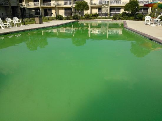 Pool Was Open And Green Picture Of The Richmond Suites