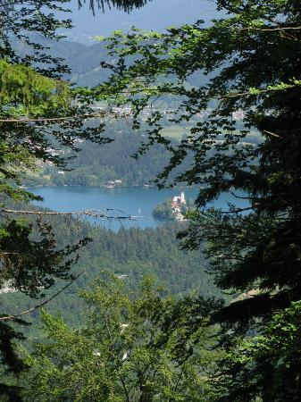 Beautiful view of Lake Bled from area above Dolinar-Krainer B&B