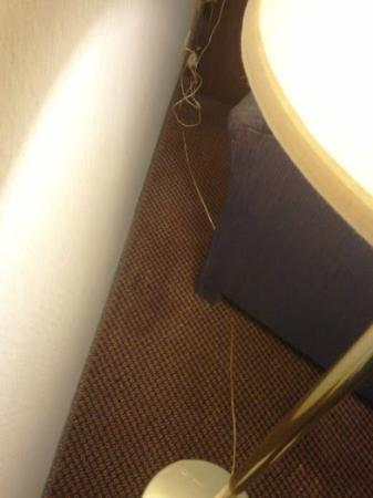 Best Western O'Hare/Elk Grove Village Hotel: Tangled cords across the stained carpet