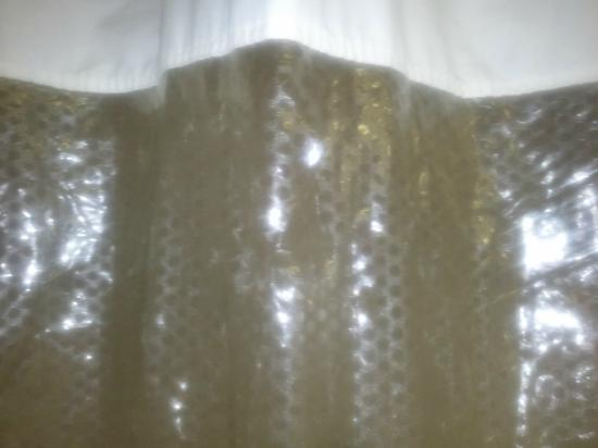 Best Western O'Hare/Elk Grove Village Hotel: My camera's flash masks the huge holes in the shower curtain.