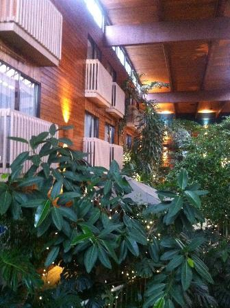 Vernon Atrium Hotel and Conference Centre: view from garden to rooms