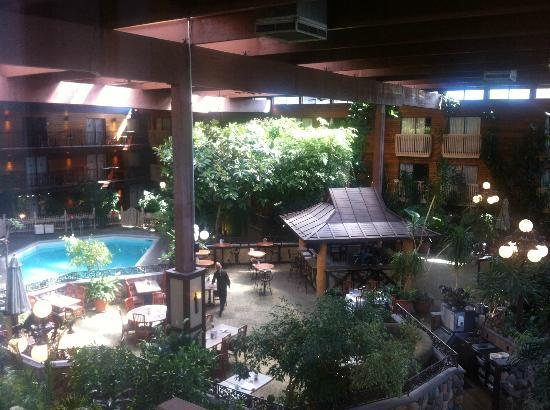 Vernon Atrium Hotel and Conference Centre: pool and garden